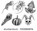 set for halloween. set of... | Shutterstock . vector #500888896