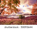 autumn at the morning park | Shutterstock . vector #50093644