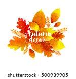 beautiful multicolored... | Shutterstock . vector #500939905