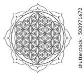 vector contour monochrome... | Shutterstock .eps vector #500971672