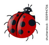Ladybug With Red Wings...