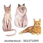 Set Of Cats  White  Brown And...