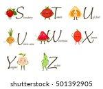 fruits and vegetables alphabet. ... | Shutterstock .eps vector #501392905