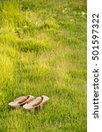 Small photo of old 'Geta' On the lawn, Traditional Japanese 'Geta' slippers.Pair of old Japanese Sandals - Geta Japanese Geta sandals are a form of traditional Japanese footwear.have space write words.