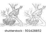 coloring book page doodle and... | Shutterstock .eps vector #501628852