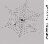 the spider in the web waits for ... | Shutterstock . vector #501720625
