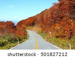 autumn leaves in yamagata japan  | Shutterstock . vector #501827212