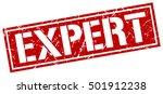 expert. grunge vintage expert... | Shutterstock .eps vector #501912238