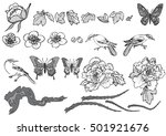 hand drawn vector set with... | Shutterstock .eps vector #501921676