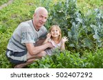 grandfather and granddaughter... | Shutterstock . vector #502407292