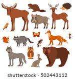 vector set of forest animals... | Shutterstock .eps vector #502443112