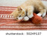 Stock photo cute little cat playing with wool reel 50249137
