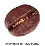 single coffee bean  isolated on ... | Shutterstock . vector #50250883