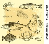 vector hand drawn sea food... | Shutterstock .eps vector #502581985