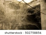 Cobwebs Invade Huge Rooms