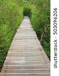 wooden bridge in mangrove forest   Shutterstock . vector #503096206