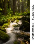 Small photo of Waterfalls in alpine fir tree forest in summer