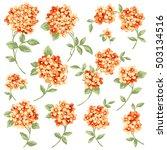 flower illustration material | Shutterstock .eps vector #503134516