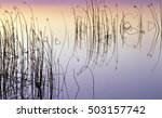peaceful lake water background... | Shutterstock . vector #503157742