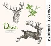 deer engraving style  vintage... | Shutterstock .eps vector #503188882