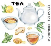 hand drawn tea pictures set... | Shutterstock . vector #503197186