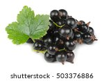 Blackcurrants With Green Leaf...