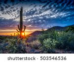 Saguaro At Sunset In The...