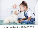 child with little dogs playing... | Shutterstock . vector #503609692