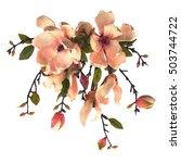 Magnolia Vintage Flower Sketch...