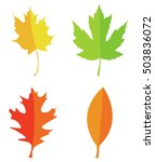 autumn leaves set.vector... | Shutterstock .eps vector #503836072