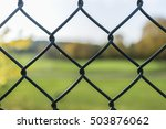 dark green lattice with autumn... | Shutterstock . vector #503876062