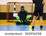 floorball goalie | Shutterstock . vector #503956558