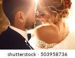 young and beautiful bride and... | Shutterstock . vector #503958736
