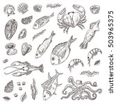 seafood elements set. hand... | Shutterstock .eps vector #503965375