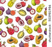 exotic and tropical fruits... | Shutterstock .eps vector #503981986