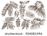 vector collection of hand drawn ... | Shutterstock .eps vector #504081496