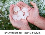 Hail In Hands After Hailstorm