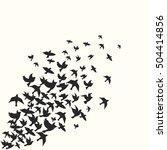 Stock vector birds silhouette vector background 504414856
