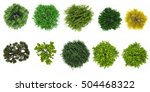 top view of tree collection... | Shutterstock . vector #504468322