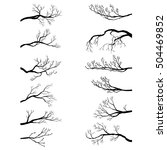 Set Of Tree Branches Without...