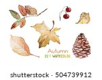 autumn set | Shutterstock . vector #504739912