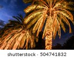 illuminated palms at a street - stock photo