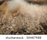 rabbit fur background | Shutterstock . vector #50487988