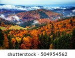 beautiful autumn colored nature ... | Shutterstock . vector #504954562