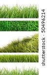 assortment of different grass... | Shutterstock . vector #50496214