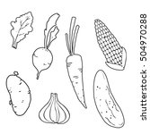 set of vegetables. hand drown....   Shutterstock .eps vector #504970288