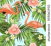 pink flamingo birds in tropical ... | Shutterstock .eps vector #505061932