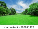 green grass field in big city... | Shutterstock . vector #505091122