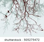 Branches Of The Trees In The...