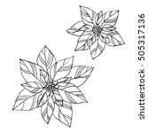 Vector Simple Poinsettia Sketc...